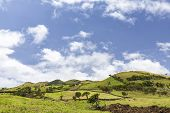 Beautiful Rolling Hills And Pastures On Pico Island In The Azores, Portugal. poster