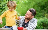 Healthy Food And Dieting. Childrens Day. Summer Picnic. Morning Breakfast. Father And Son Eating Out poster