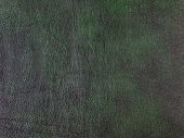 Genuine Dark Green Cattle Leather Texture Background. Macro Photo poster