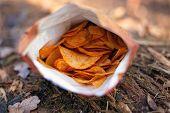 Orange Crispy Chips In A Pack Closeup. Salty Snacks Fast Junk Food . poster