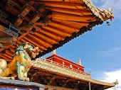Tibetan Roof Decoration