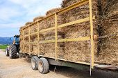 Tractor loaded with hay