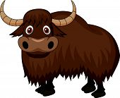 Yak cartoon