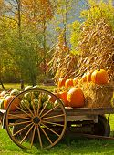 image of wagon wheel  - wagon with watermelons and pumpkins in autumn scene vertical - JPG