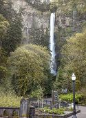 Spring At Multnomah Falls Oregon.