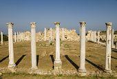 Roman Pillars, Salamis Cyprus