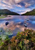 Lake In Killarney