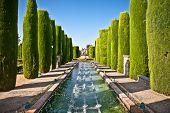 Jardines en el Alcázar de los Reyes Cristianos en Córdoba, Andalucía, España