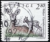 Roe And Fawn Stamp