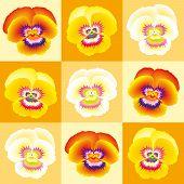 Pansy Orange