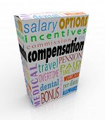 Compensation Full Pay Benefits Salary Package Bonus Insurance