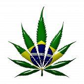 Marijuana In Brazil