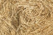 A close up of a bale of hay or straw.