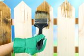 Applying protective varnish to wooden fence, on bright background