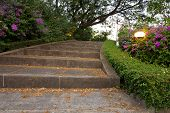 Stair in Park Landscaped