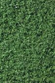 Fake Grass Used On Sports Fields