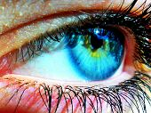 Girl's Bright Blue And Green Eye