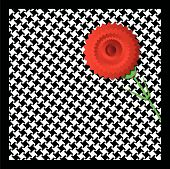 picture of carnations  - Illustration of a carnation on houndstooth fabric - JPG