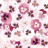 Seamless pattern with pink pansy flowers. Vector illustration.