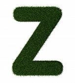 Grass alphabet-Z