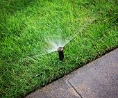 an automatic sprinkler watering grass
