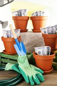 Business concept: growing money in the flowerpots and gardening tools on nature background