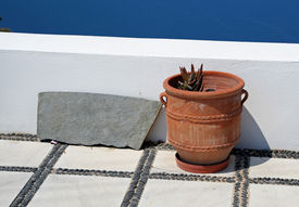 stock photo of flower pot  - Flower pot and stone - JPG