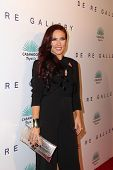 LOS ANGELES - OCT 23:  Sharna Burgess at the De Re Gallery & Casamigos Host The Opening Brian Bowen Smith's