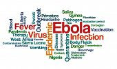 Word Cloud on a white background - Ebola
