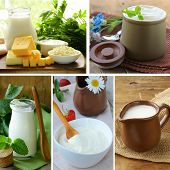 collage of assorted dairy products (milk, cheese, yogurt, sour cream)