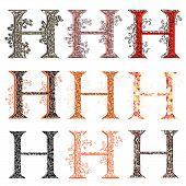 Various Combination Fishnet Letter H.