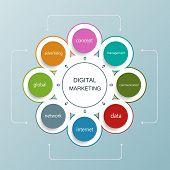 Digital marketing plan Vector