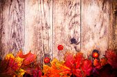 Brown wooden planks, wood colored autumn leaves decorated.