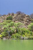 Island In Lake Baringo In Kenya.