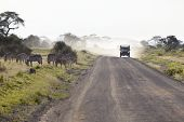 Постер, плакат: Zebras And Safari Car In Kenya