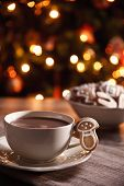 Hot Chocolate With Homemade Gingerbread