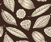 foto of cocoa beans  - engraved pattern of leaves and fruits of cocoa beans - JPG