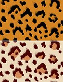 Seamless leopard pattern.  Repeating animal background