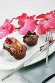 Fruit Tarts, Elegance Presentation
