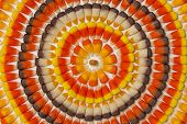 Candy Corn Circles