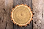 Tree Stump Round Cut With Annual Rings On Wooden Background