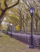 Autumn colors in Central Park, Manhattan New York
