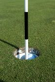 Golf Ball and Marker in Hole