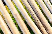 Bamboo Fence Background And Texture