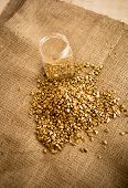 picture of gold nugget  - Pile of washed out gold nuggets and glass jar on burlap  - JPG