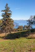 pic of lagos  - View of coastline of  Lago Maggiore - JPG