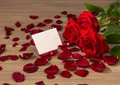 foto of wedding feast  - roses as a gift and surprise to a feast - JPG