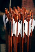 pic of fletching  - Set of wooden brown arrows ready to the shoot - JPG