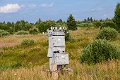 pic of substation  - Old power transformer substation in the village - JPG