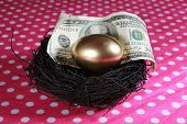 foto of laying eggs  - Nest Egg. A Solid 24K Golden Egg lays in a Black Bird Nest with a Genuine 100 Dollar bill. Represents Retirement savings, Saving for a Rainy Day, Savings account, 401K, Banking, Finance business - JPG